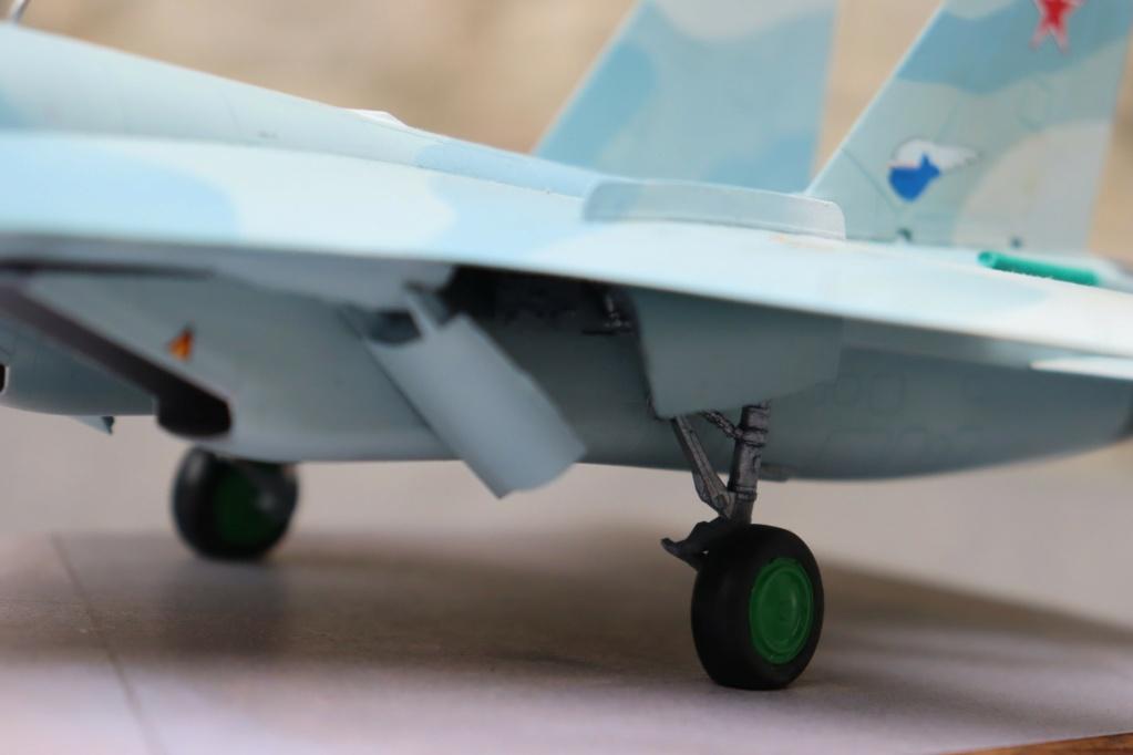 Sukhoi T10 (MODELVIST 1/72) - Page 4 Img_9924