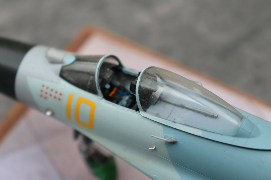 Sukhoi T10 (MODELVIST 1/72) - Page 4 Img_9925