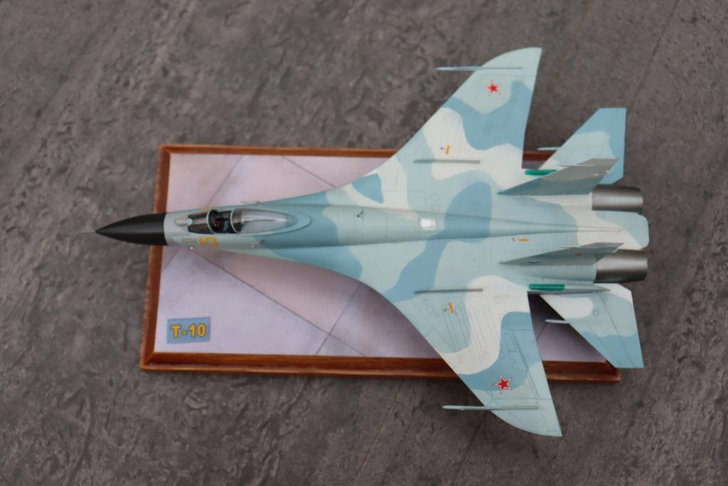 Sukhoi T10 (MODELVIST 1/72) - Page 4 Img_9926