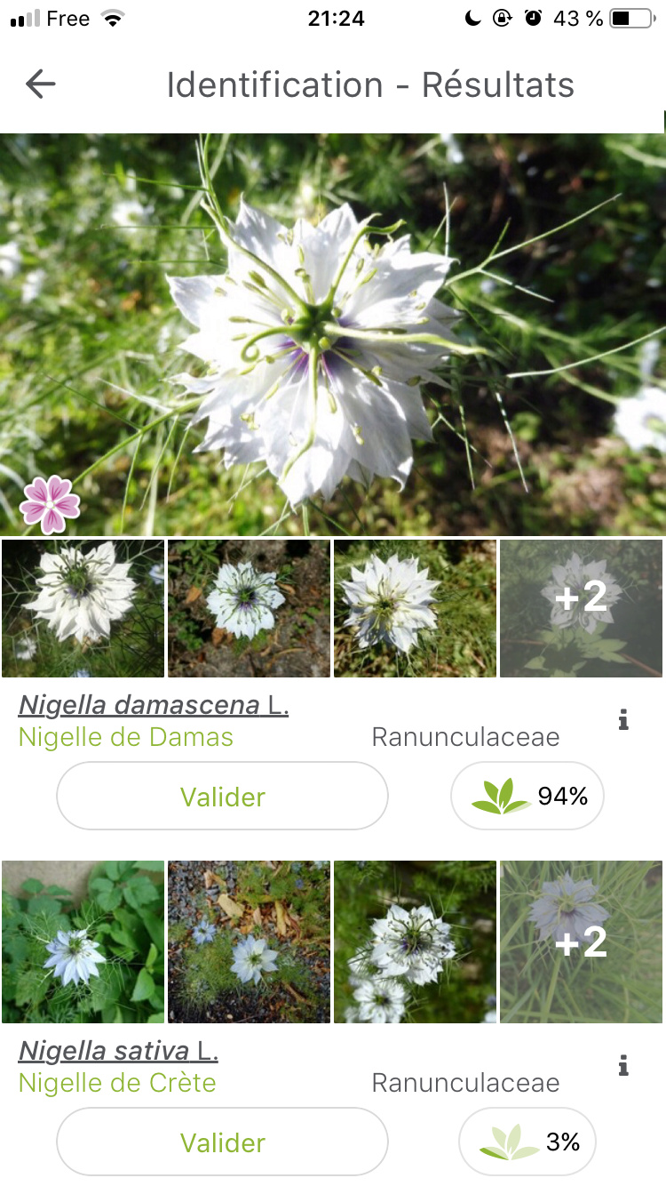 Histoire de plantes et de jardinage B605c110