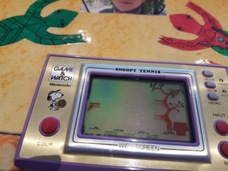 Tache verte lcd game and watch 20190411
