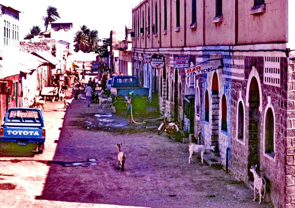 [Campagne] DJIBOUTI - TOME 1 - Page 20 _cop2368