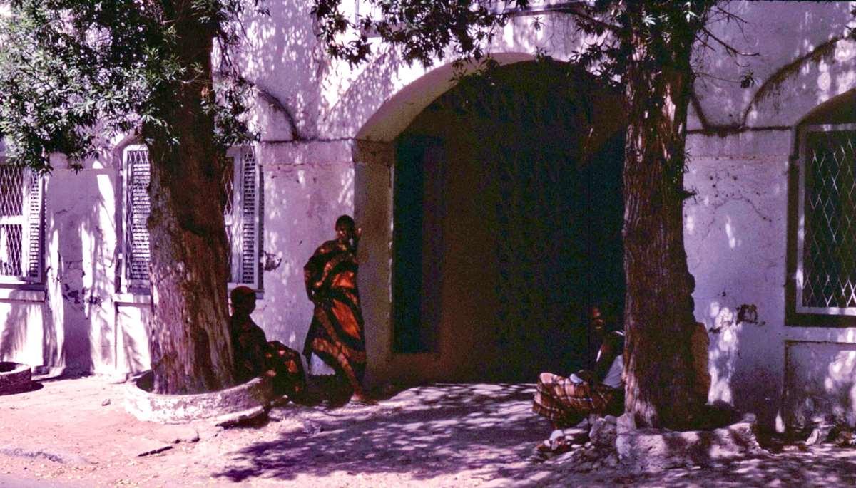 [Campagne] DJIBOUTI - TOME 1 - Page 21 _cop2383