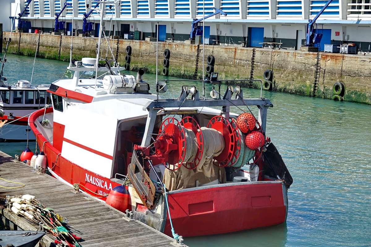 [VIE DES PORTS] Quelques bateaux de pêche (sur nos côtes Françaises) - Page 9 _cop5195