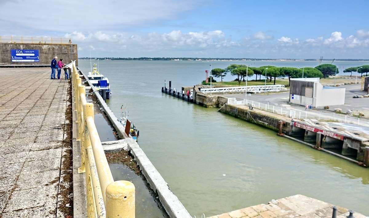 [Vie des ports] Port de Saint Nazaire - Page 8 _cop8183