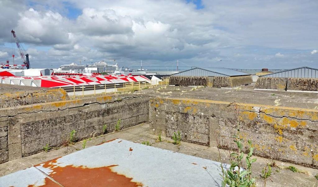 [Vie des ports] Port de Saint Nazaire - Page 8 _cop8522
