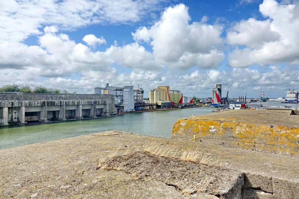 [Vie des ports] Port de Saint Nazaire - Page 8 _cop8530
