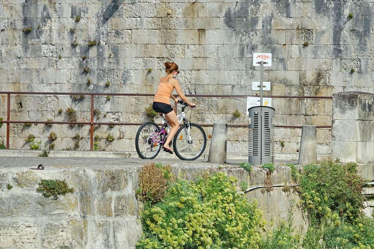[Vie des Ports ] Port de La Rochelle  - Page 2 Dsc02758