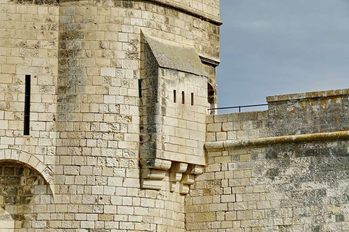 [Vie des Ports ] Port de La Rochelle  - Page 2 Dsc02762