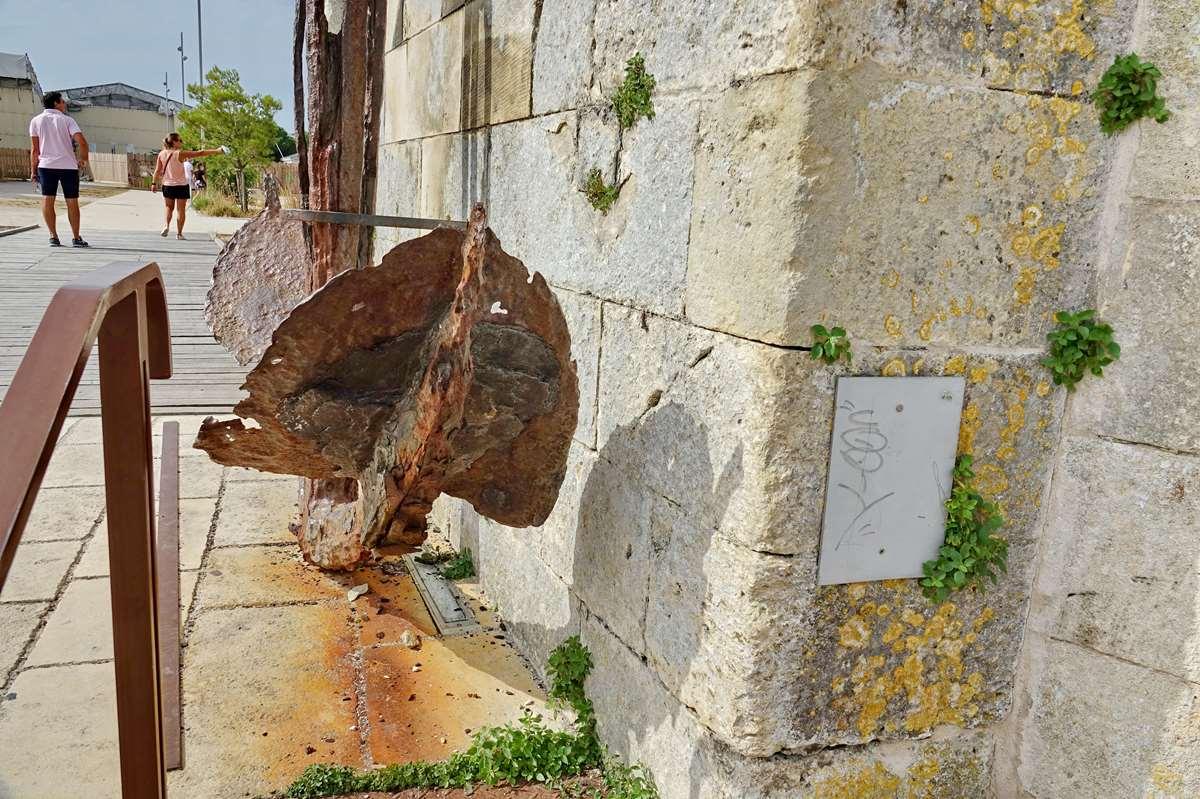 [Vie des Ports ] Port de La Rochelle  - Page 3 Dsc04596