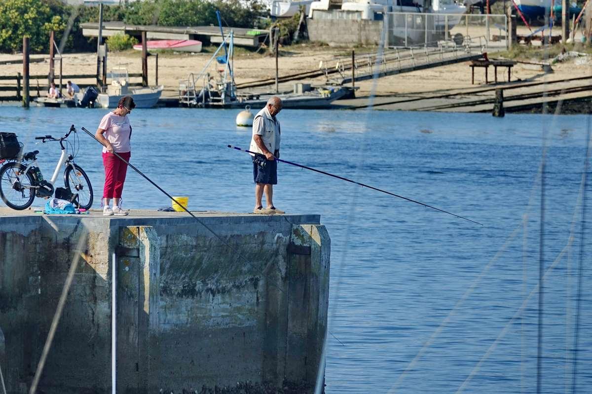[Vie des ports] Etel d'aujourd'hui et son histoire de la pêche au thon Dsc05937