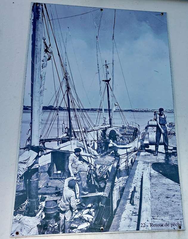 [Vie des ports] Etel d'aujourd'hui et son histoire de la pêche au thon Dsc05964