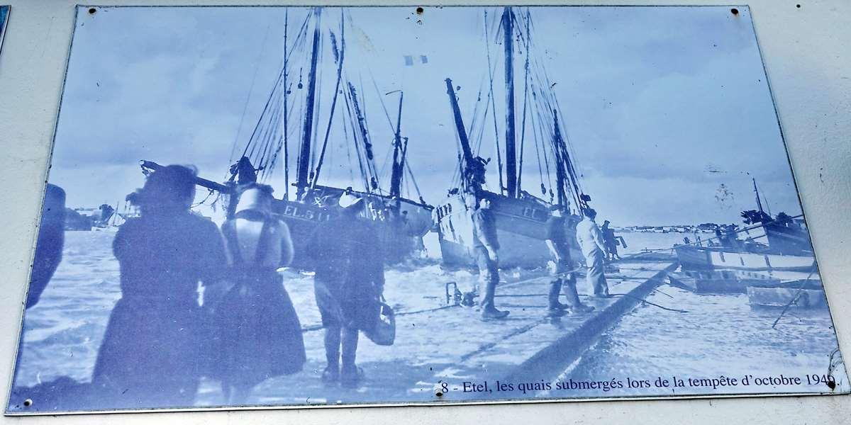 [Vie des ports] Etel d'aujourd'hui et son histoire de la pêche au thon Dsc06047