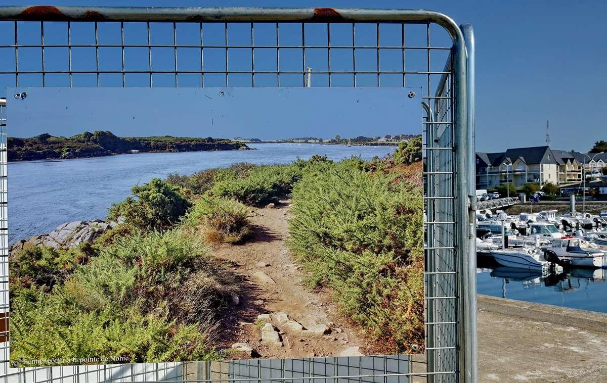 [Vie des ports] Etel d'aujourd'hui et son histoire de la pêche au thon Dsc06073