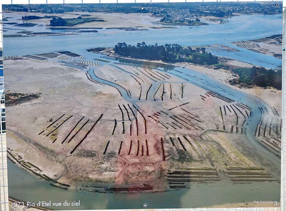 [Vie des ports] Etel d'aujourd'hui et son histoire de la pêche au thon Dsc06076