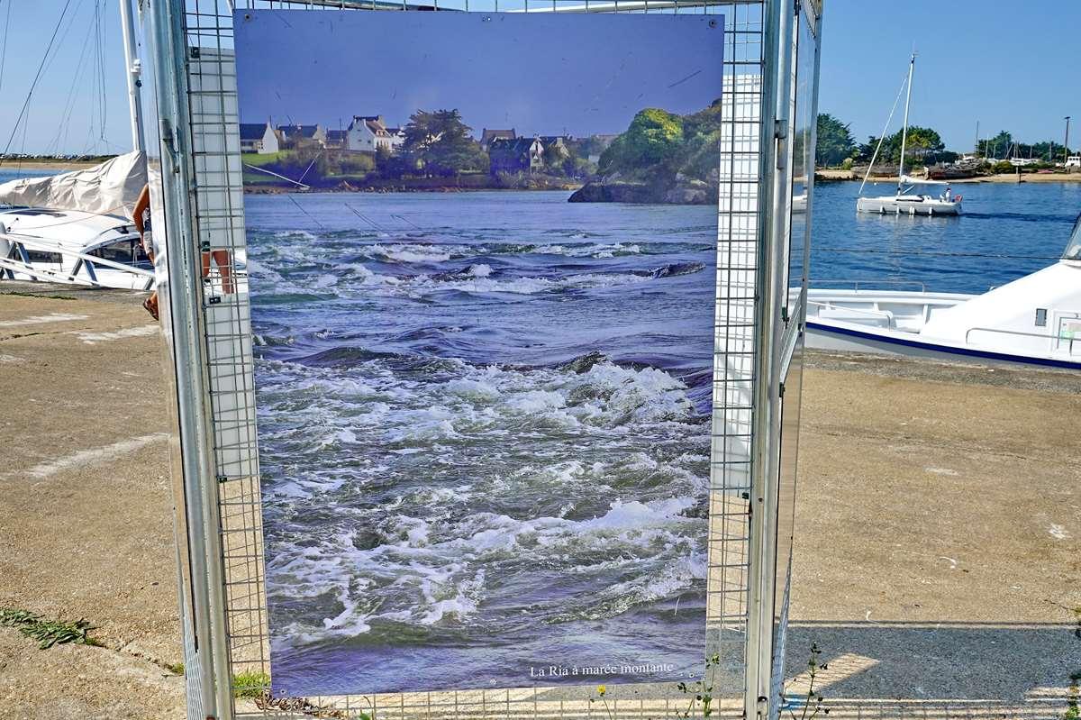 [Vie des ports] Etel d'aujourd'hui et son histoire de la pêche au thon Dsc06078