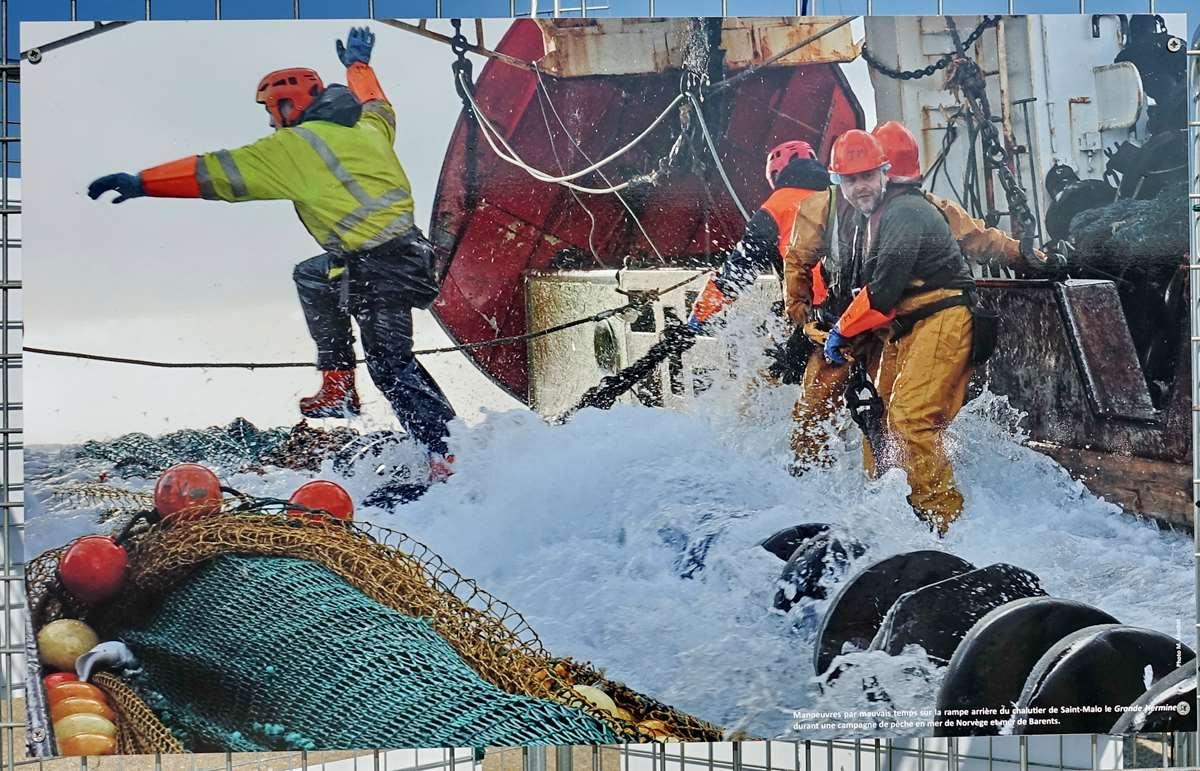 [Vie des ports] Etel d'aujourd'hui et son histoire de la pêche au thon Dsc06080