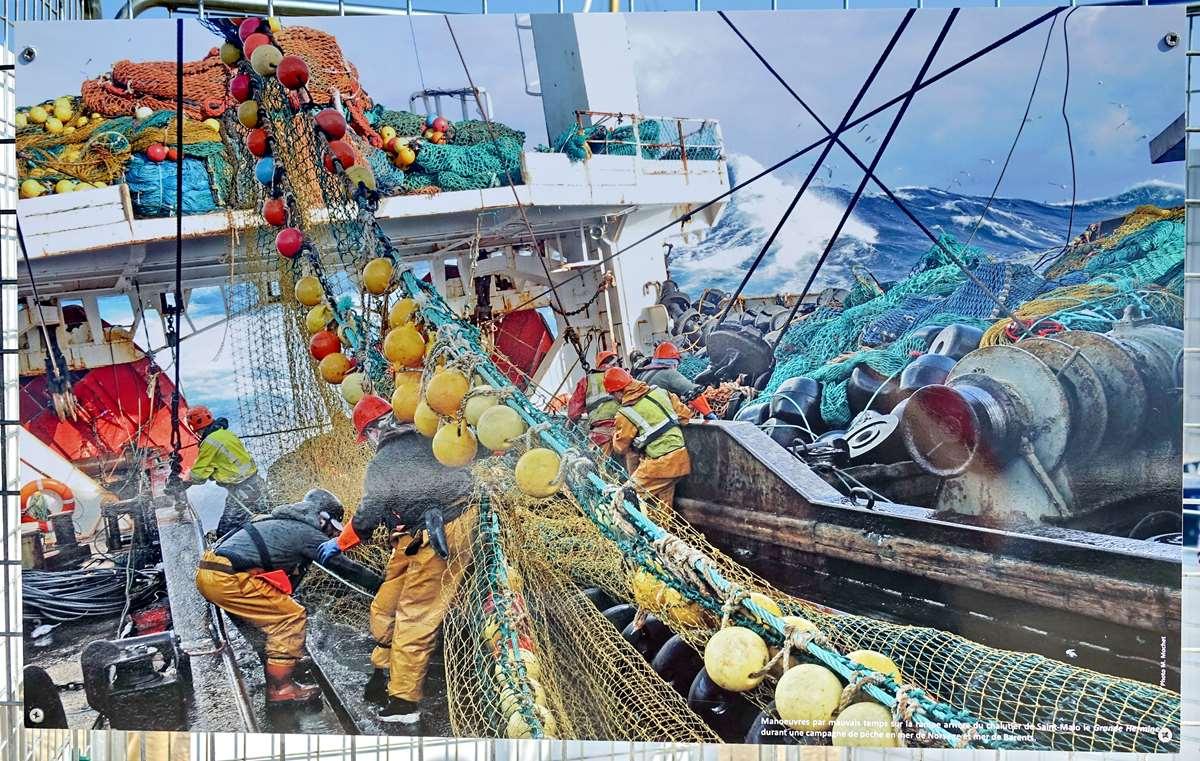 [Vie des ports] Etel d'aujourd'hui et son histoire de la pêche au thon Dsc06083