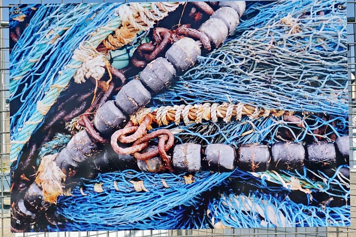 [Vie des ports] Etel d'aujourd'hui et son histoire de la pêche au thon Dsc06091