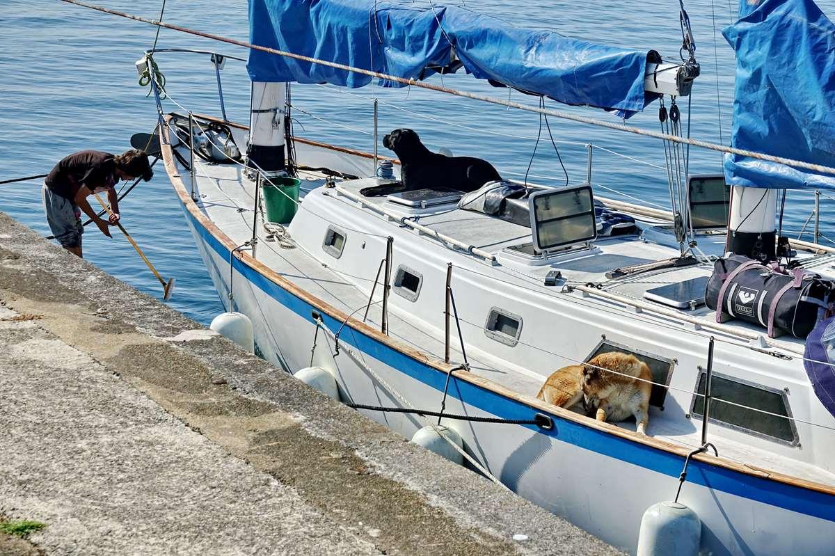 [Vie des ports] Etel d'aujourd'hui et son histoire de la pêche au thon - Page 2 Dsc06317