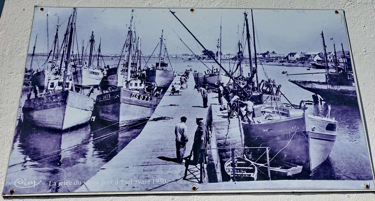 [Vie des ports] Etel d'aujourd'hui et son histoire de la pêche au thon - Page 3 Dsc10009