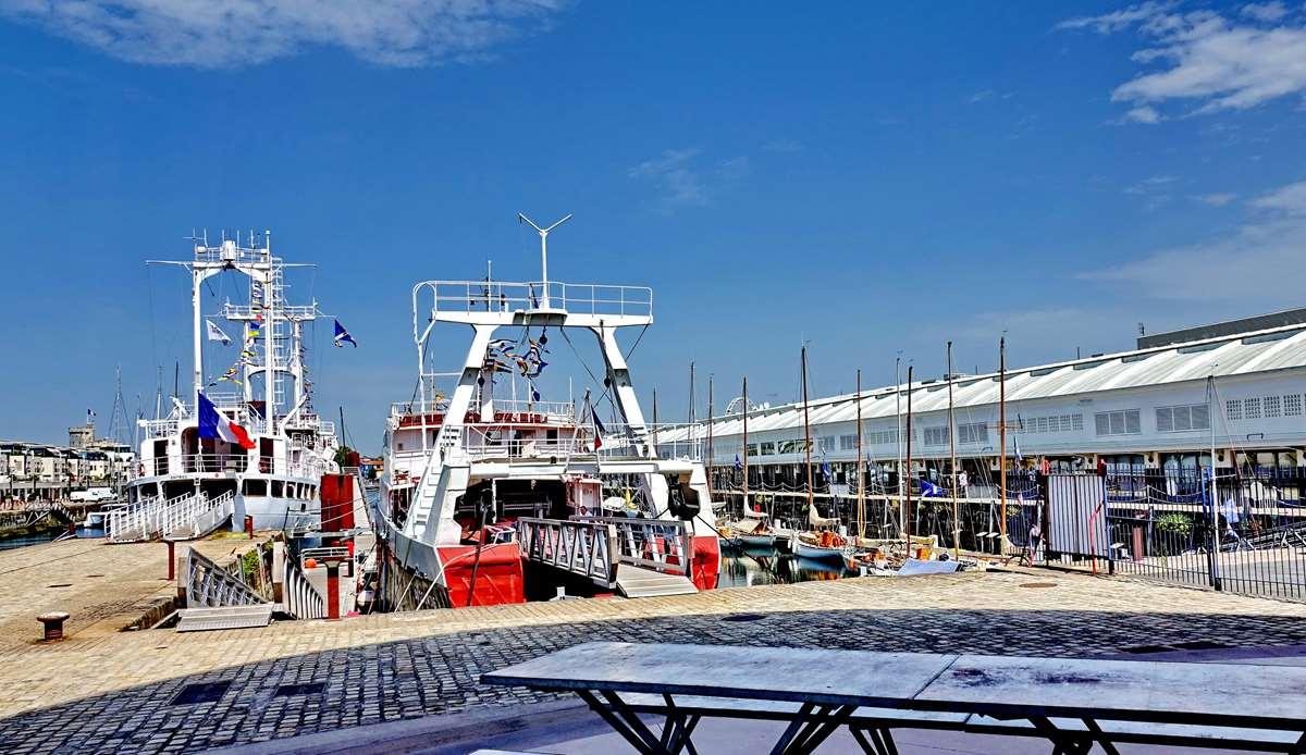 [Vie des Ports ] Port de La Rochelle  - Page 6 Dsc10246