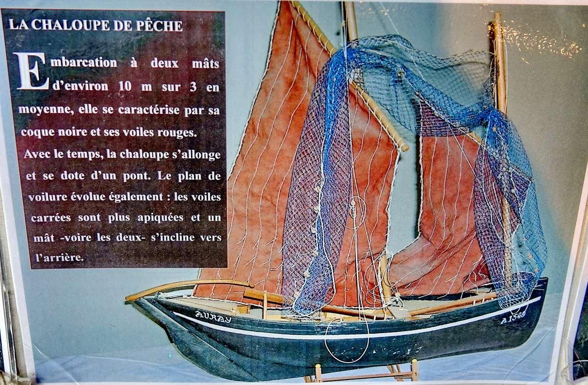 [Vie des ports] Etel d'aujourd'hui et son histoire de la pêche au thon - Page 4 Dsc10493