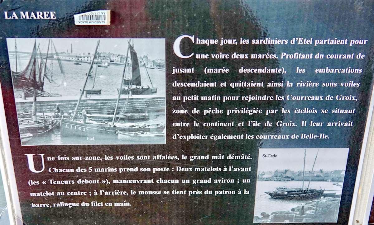 [Vie des ports] Etel d'aujourd'hui et son histoire de la pêche au thon - Page 4 Dsc10496