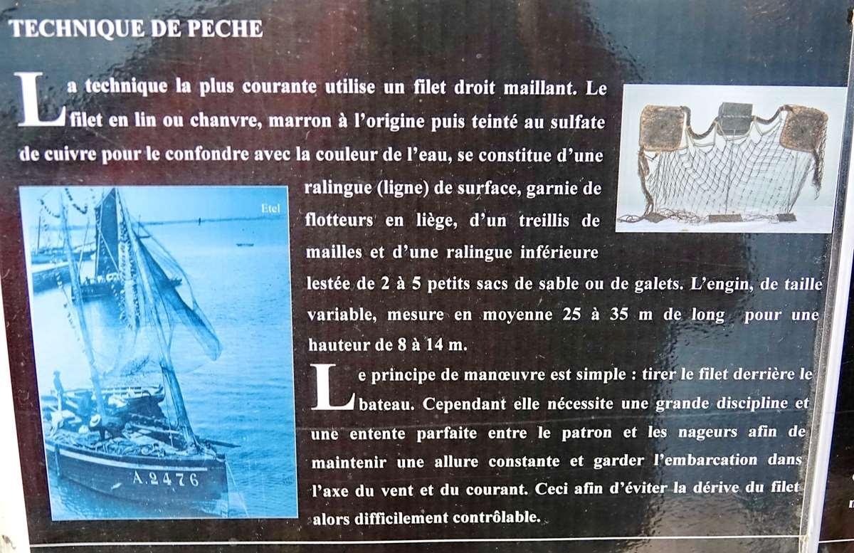 [Vie des ports] Etel d'aujourd'hui et son histoire de la pêche au thon - Page 4 Dsc10500