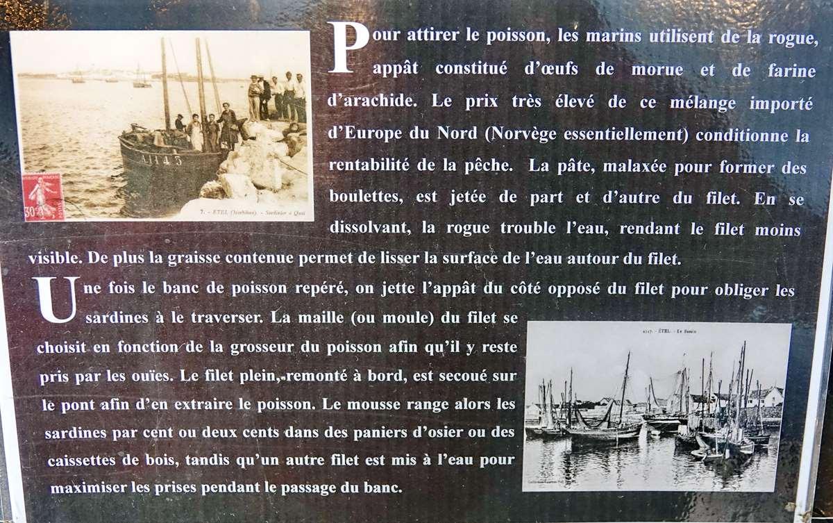 [Vie des ports] Etel d'aujourd'hui et son histoire de la pêche au thon - Page 4 Dsc10502