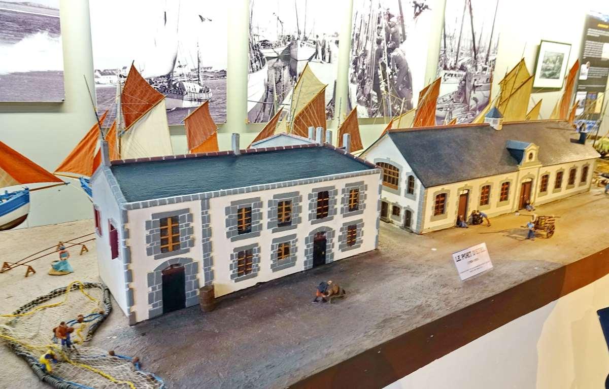 [Vie des ports] Etel d'aujourd'hui et son histoire de la pêche au thon - Page 4 Dsc10571
