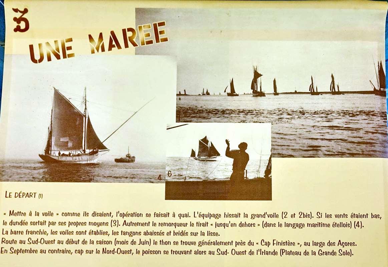 [Vie des ports] Etel d'aujourd'hui et son histoire de la pêche au thon - Page 4 Dsc10672