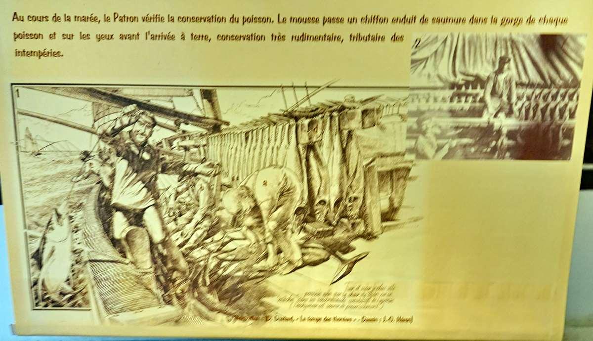 [Vie des ports] Etel d'aujourd'hui et son histoire de la pêche au thon - Page 4 Dsc10894