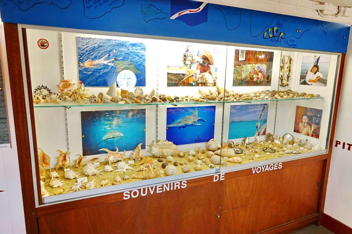[Vie des Ports ] Port de La Rochelle  - Page 10 Dsc11178