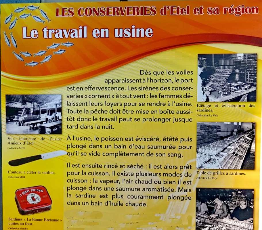 [Vie des ports] Etel d'aujourd'hui et son histoire de la pêche au thon - Page 6 Dsc11529