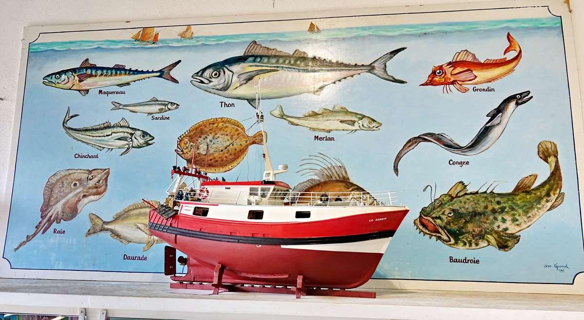 [Vie des ports] Etel d'aujourd'hui et son histoire de la pêche au thon - Page 6 Dsc11559
