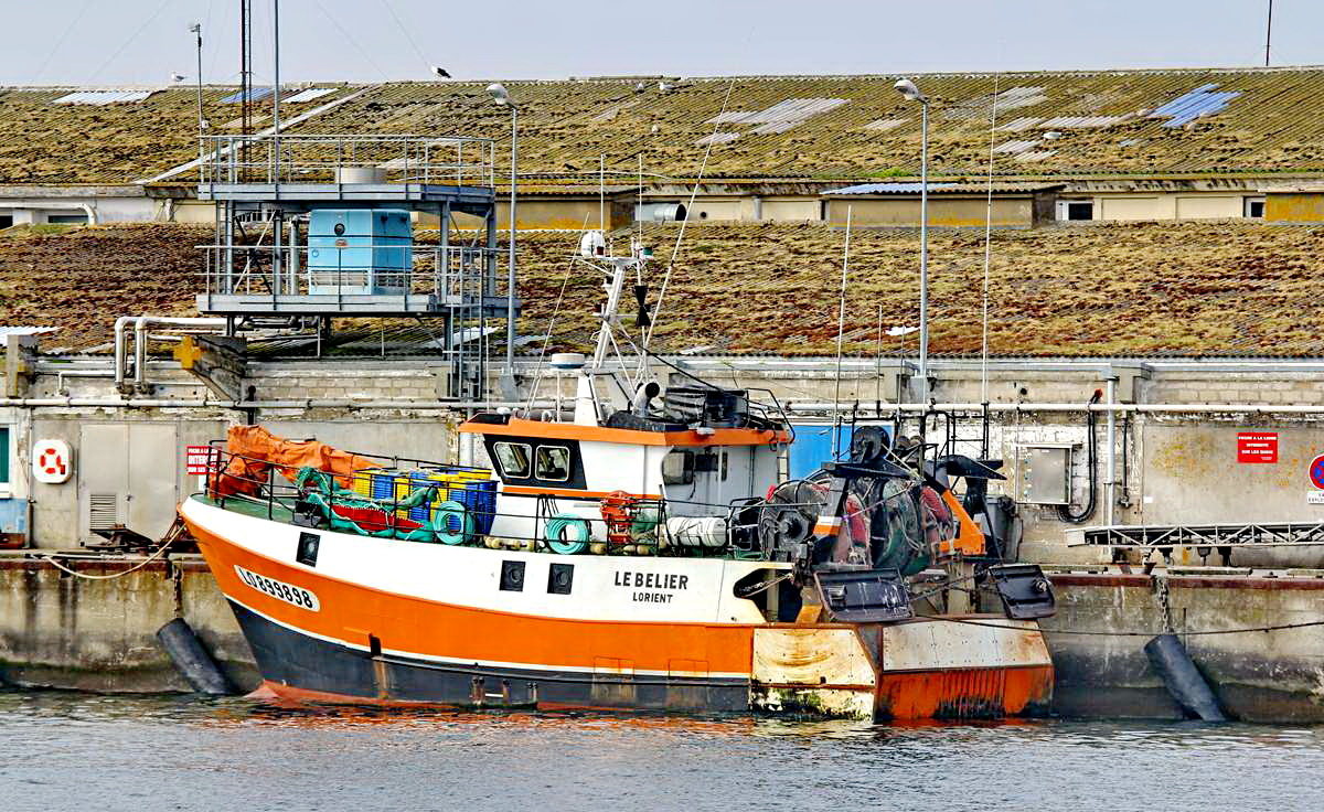 [VIE DES PORTS] Quelques bateaux de pêche (sur nos côtes Françaises) - Page 9 Img_7522