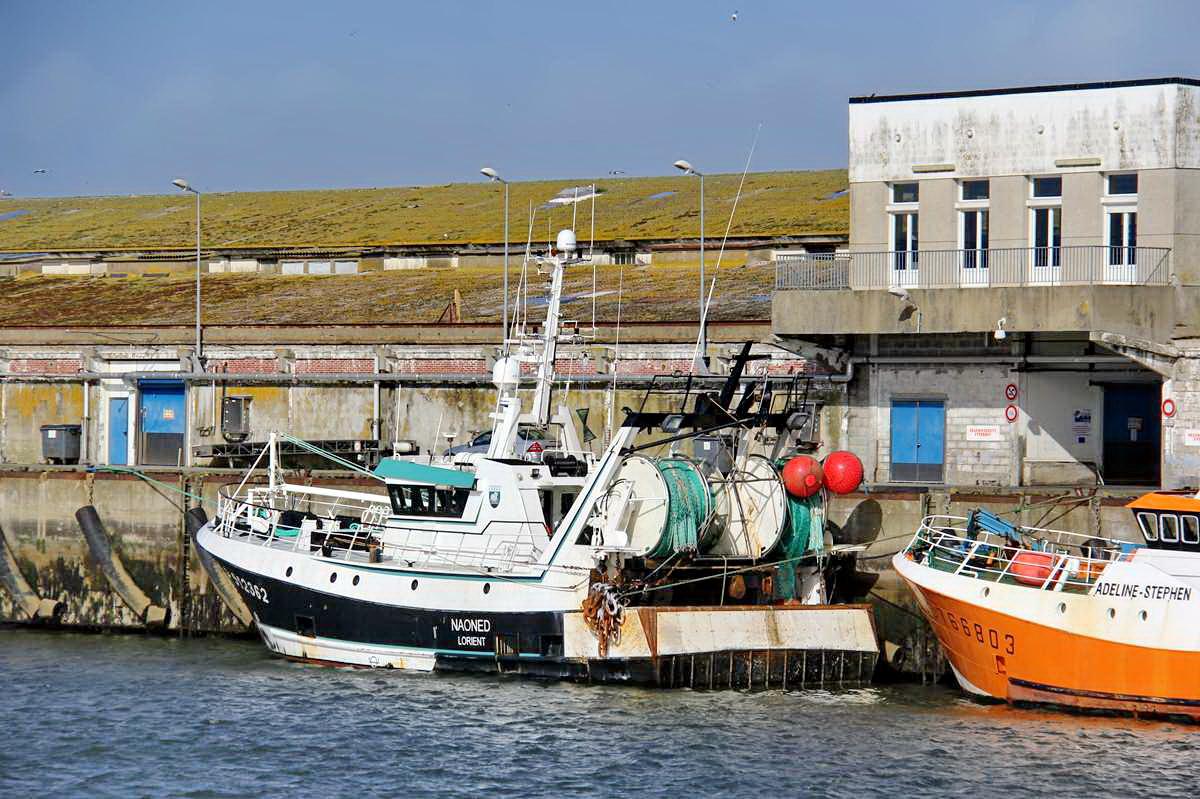[VIE DES PORTS] Quelques bateaux de pêche (sur nos côtes Françaises) - Page 9 Img_7616