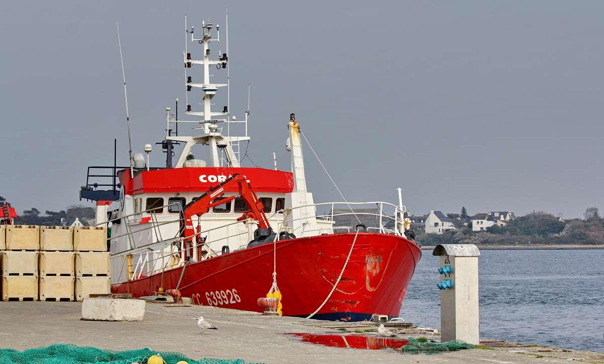 [VIE DES PORTS] Quelques bateaux de pêche (sur nos côtes Françaises) - Page 9 Img_7618