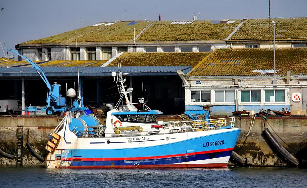 [VIE DES PORTS] Quelques bateaux de pêche (sur nos côtes Françaises) - Page 9 Img_7746