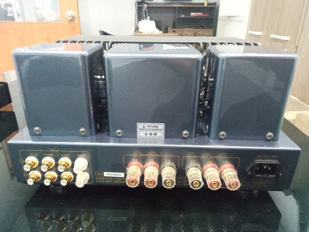Cayin A-50T (EH) Vacuum Tube Amplifier (Full Set) Img20112