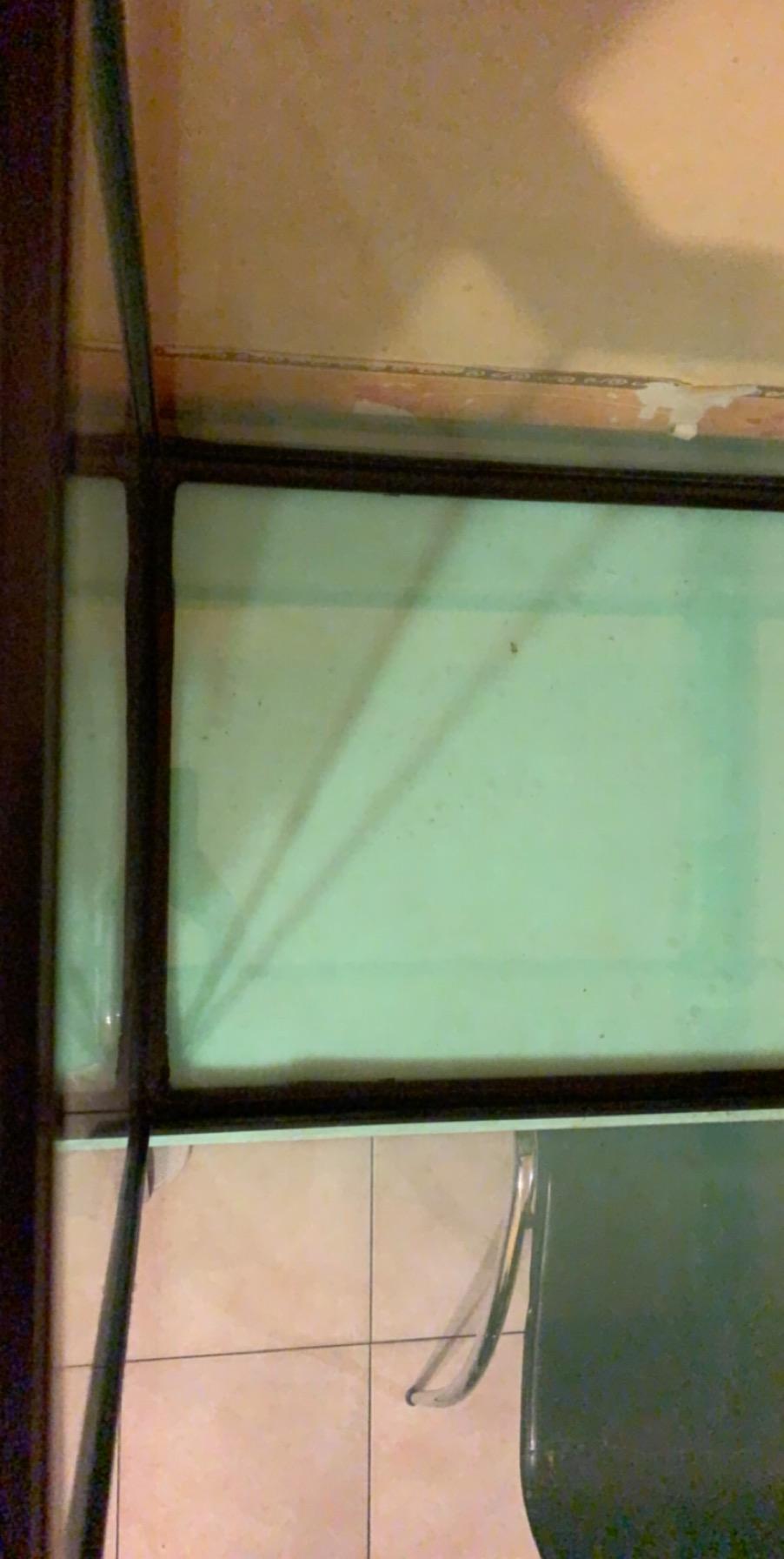 Lancement Aquarium Juwel Rio 240 d'occasion  89179310