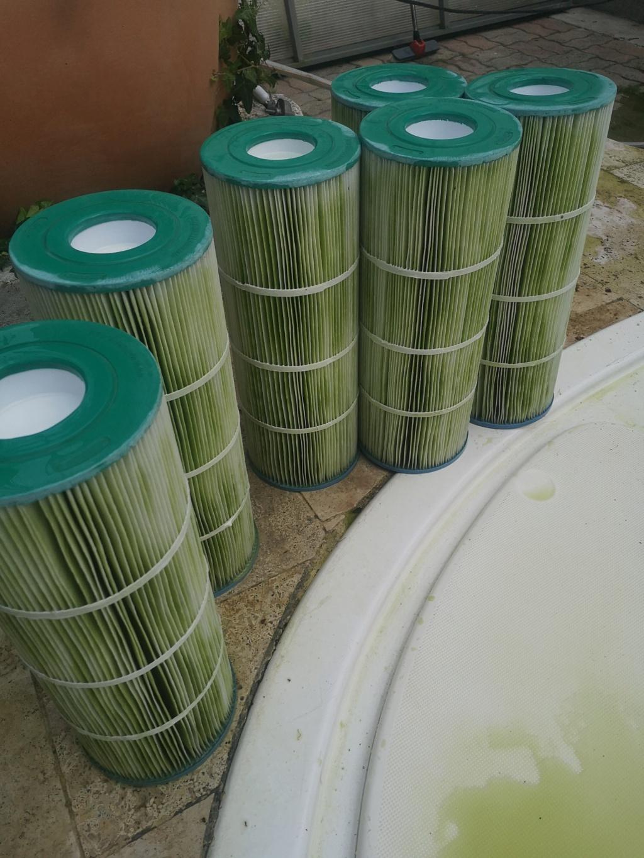 Eau verte, stabilisant et phosphates Img_2021