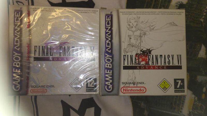 Final Fantasy Forever Dsc_0014