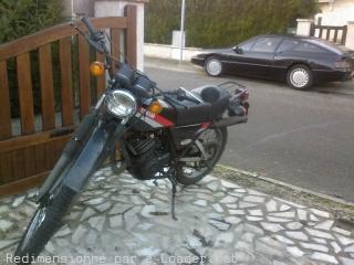 DTMX 125cc Membres / Mod. 1980 6jro1810