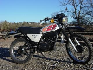 DTMX 125cc Membres / Mod. 1977 Dsc01810