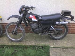 DTMX 125cc Membres / Mod. 1981 Photo_23