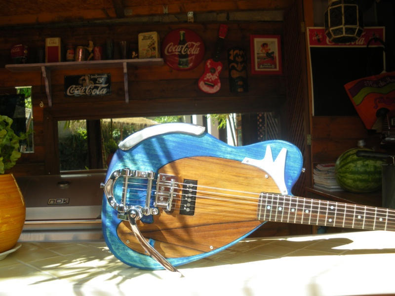 ......Ma première guitare Mister M...hum hum..... - Page 2 Imgp0214