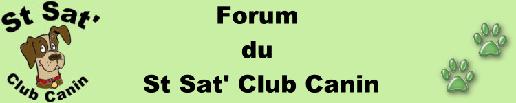 Forum du St Sat' club canin