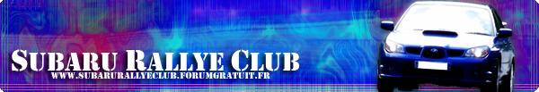 WRC - 2012 - Citroen Michel11